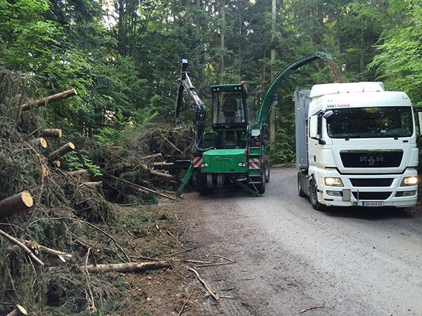 Verladen von Bäumen auf einen LKW nach den Forstarbeiten