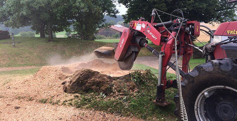 Forstarbeiten inklusive Gehölzpflege und Rodungsarbeiten