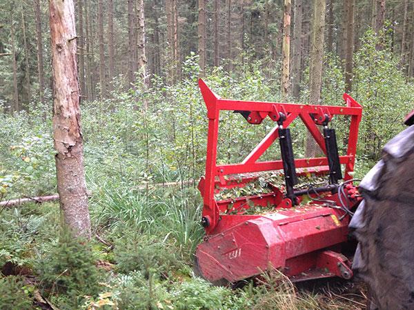 Mulcharbeiten in einem Waldstück