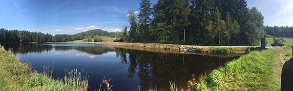 Wurzelstockfräsen rund um eine See